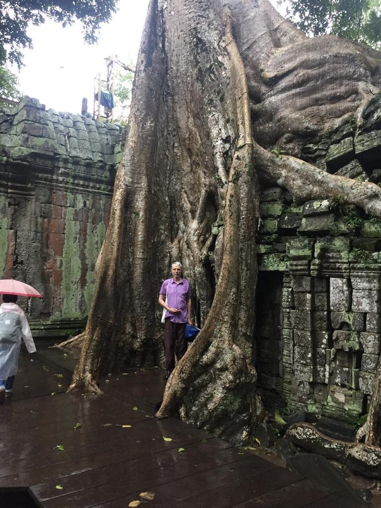 Ankur Wat - Cambodia